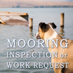mooring inspection